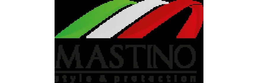 Стальные двери MASTINO